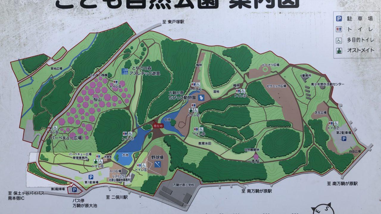 大池公園案内図