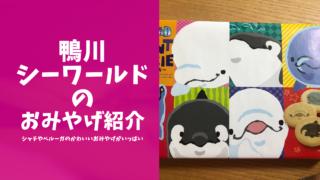 鴨川シーワールドのおみやげ紹介ブログのアイキャッチ