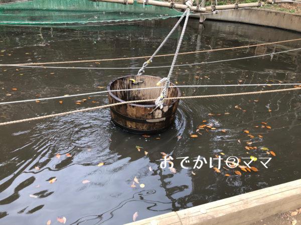 フィールドアスレチックつくし野の水に浮かぶ桶