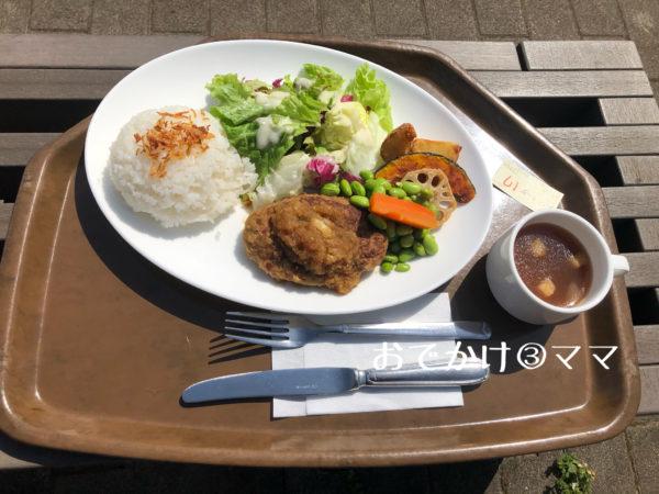 花菜ガーデンレストランのキッチンHanaの和風おろしハンバーグ