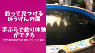 釣って見つけるぼうけんの国の体験ブログのアイキャッチ画像