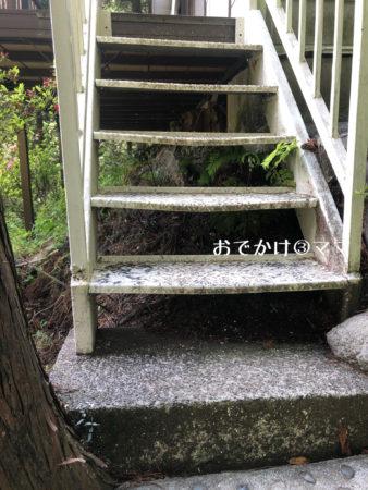 リッチランドのコテージの階段