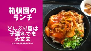 箱根園のどんぶり屋さんのレポブログのアイキャッチ画像
