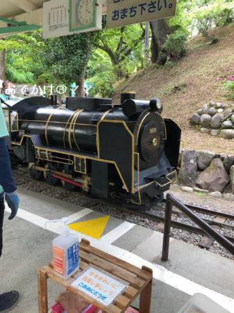 小田原城のこども遊園地も豆汽車