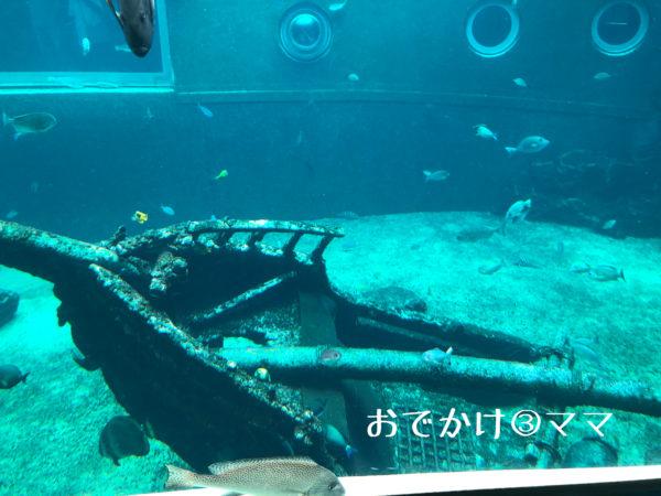 箱根園水族館の水槽の中の船