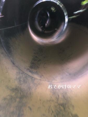 大野路ファミリーキャンプ場のチャレンジ広場の日本一長いトンネル